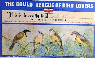 A sample from the HMSS 0468 ADAMS, Richard (Dick) Henry Talbot Papers.  Dick Adams' Membership card to the Gould League of Bird Lovers of NSW 1910-1946