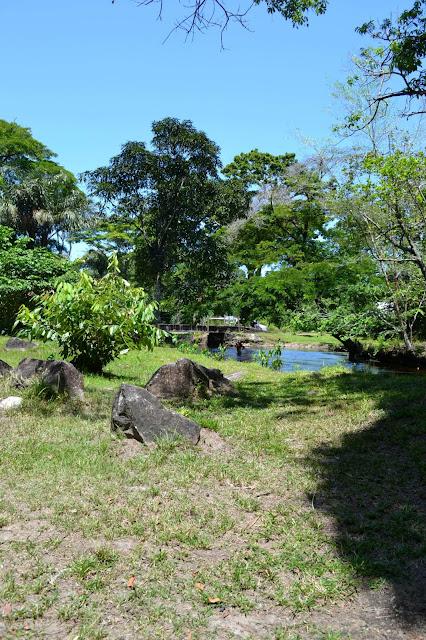 Guyane, crique, canceler, se baigner