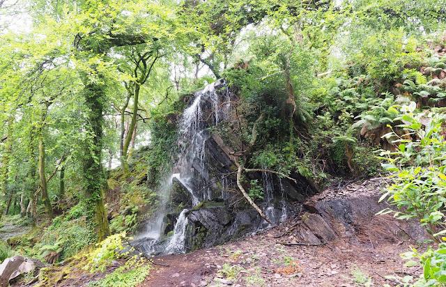 Kells Bay Gardens, vesiputous, metsä, Irlanti