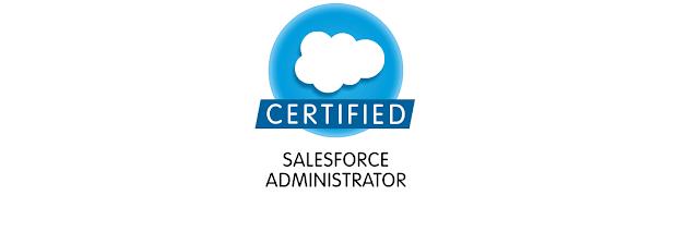 Sales Force ADM-211 Administration Essentials 4 Expert Test