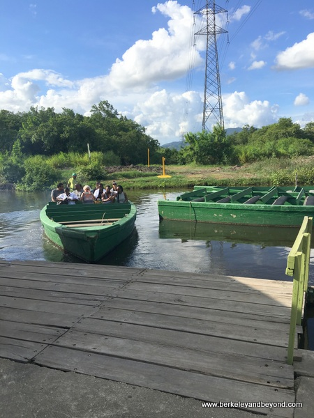Nanan's Bird Sanctuary Tours boats at Caroni Swamp & Bird Sanctuary in Trinidad