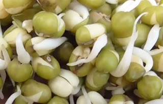 HOW TO MAKE SPROUTS AT HOME | NUTRITIOUS VILLAGE FOOD ! VILLAGE FOOD