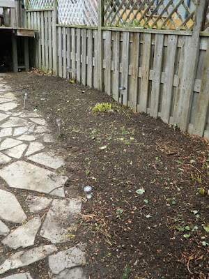 Leslieville Fall Cleanup After by Paul Jung Gardening Services--a Toronto Gardening Services Company
