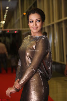 Actress Catherine Tresa in Golden Skin Tight Backless Gown at Gautam Nanda music launchi ~ Exclusive Celebrities Galleries 049.JPG