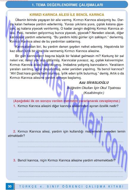 4. Sınıf Doku Yayınları Türkçe Çalışma Kitabı Cevapları Sayfa 30