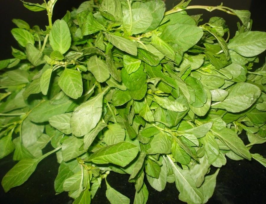 Amaranthus Toor Dal Curry Recipe How to Make ~ Mom's Recipes