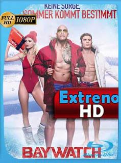 Los guardianes de la bahía (2017) HD [1080p] Latino [GoogleDrive]