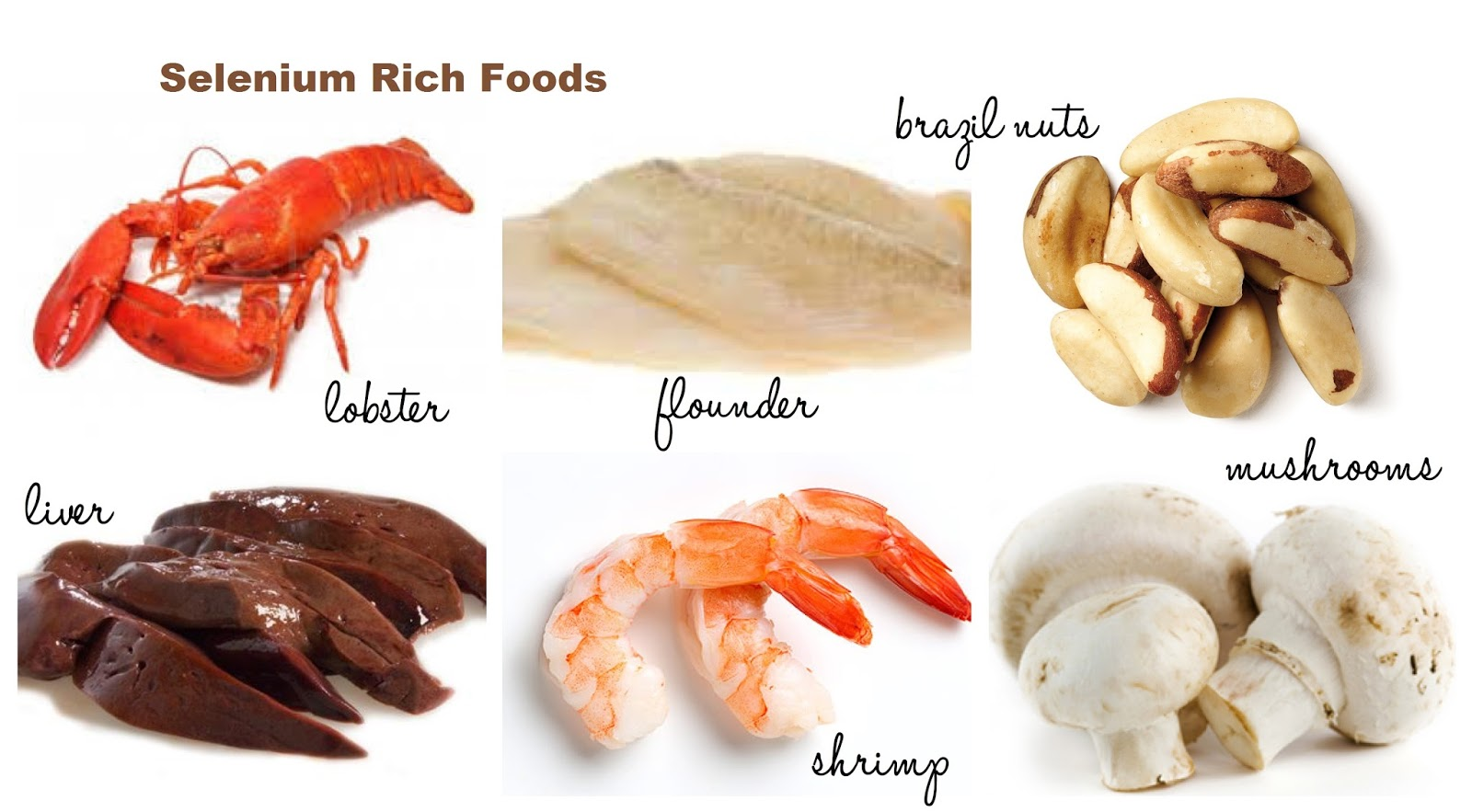 Foods High In Selenium And Vitamin E