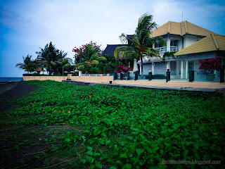 Beachfront Villa And Natural Ipomoea Pes Caprae Or Beach Morning Glory Plants At Umeanyar Village, North Bali, Indonesia