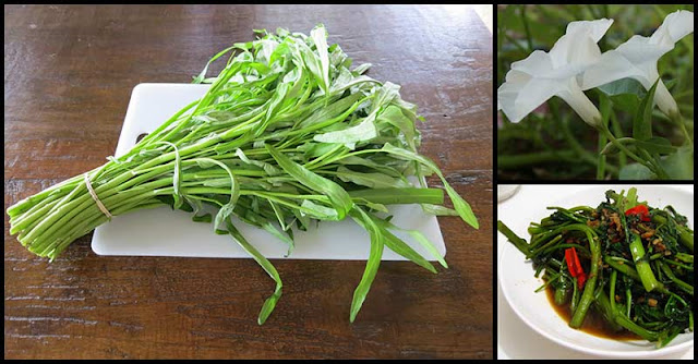 Kangkong (Water Spinach): A Green Leafy Veggie With Anti-Alzheimer's Properties
