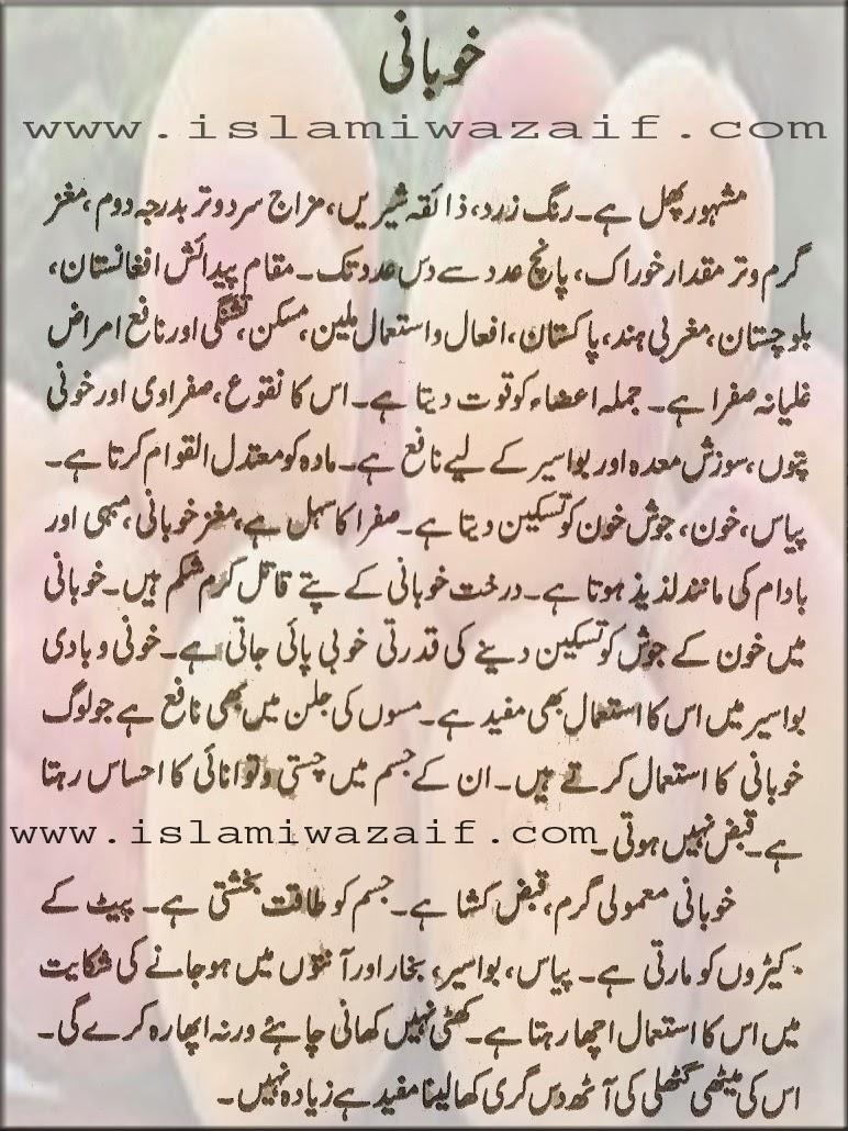 khubani k faide in urdu