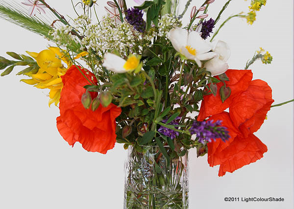 Spring wildflower bouquet with poppies