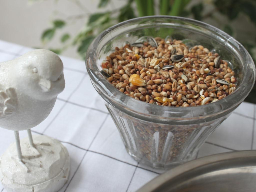 mandy bla bla diy boules de graisse graines pour les. Black Bedroom Furniture Sets. Home Design Ideas