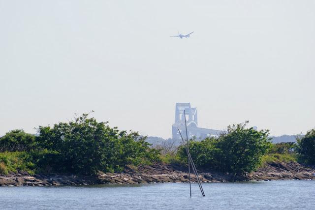 ゲートブリッジと飛行機~葛西臨海公園