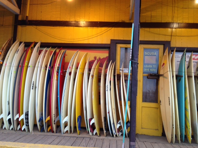 image result for row of colorful surfboards at surf shop