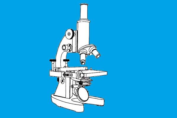 Bagian - bagian Mikroskop dan Fungsinya