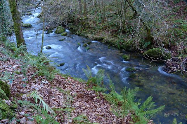 Río Infierno - Piloña - Asturias
