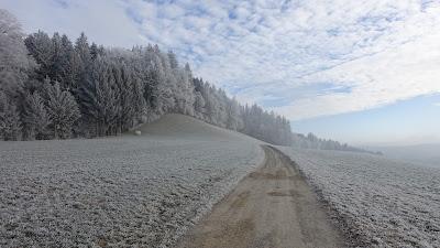 Weg in Raureif-Landschaft