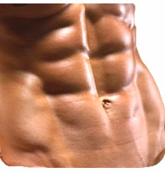 The Scientific Approach To Building A Maintainable Six Pack