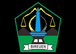 Logo KABUPATEN BIREUEN Vector