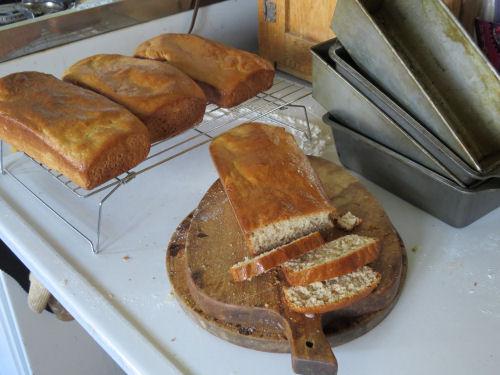 bread that didn't raise right