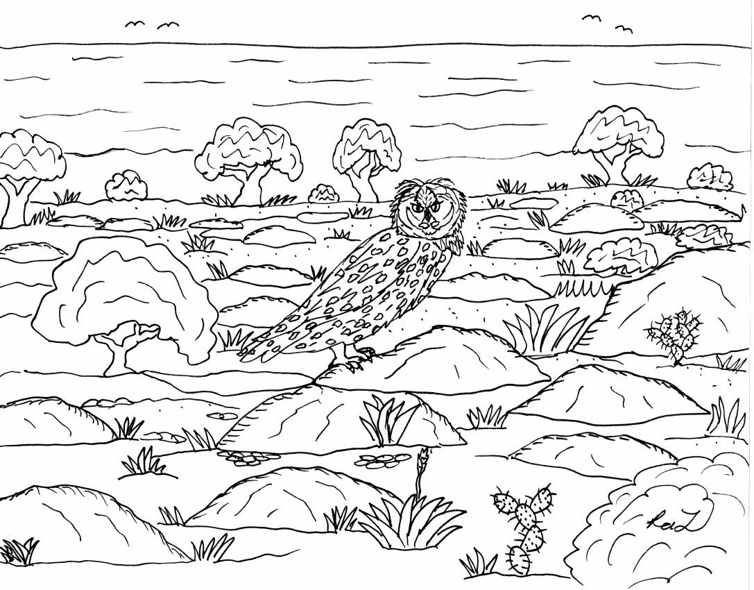 Robin's Great Coloring Pages: Short Eared Owl from the ...