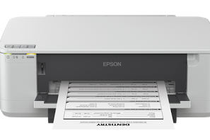 Epson K100 Printer Driver