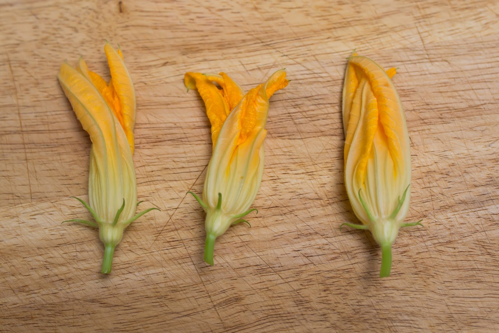 z is for zucchini blossoms stuffed with ricotta