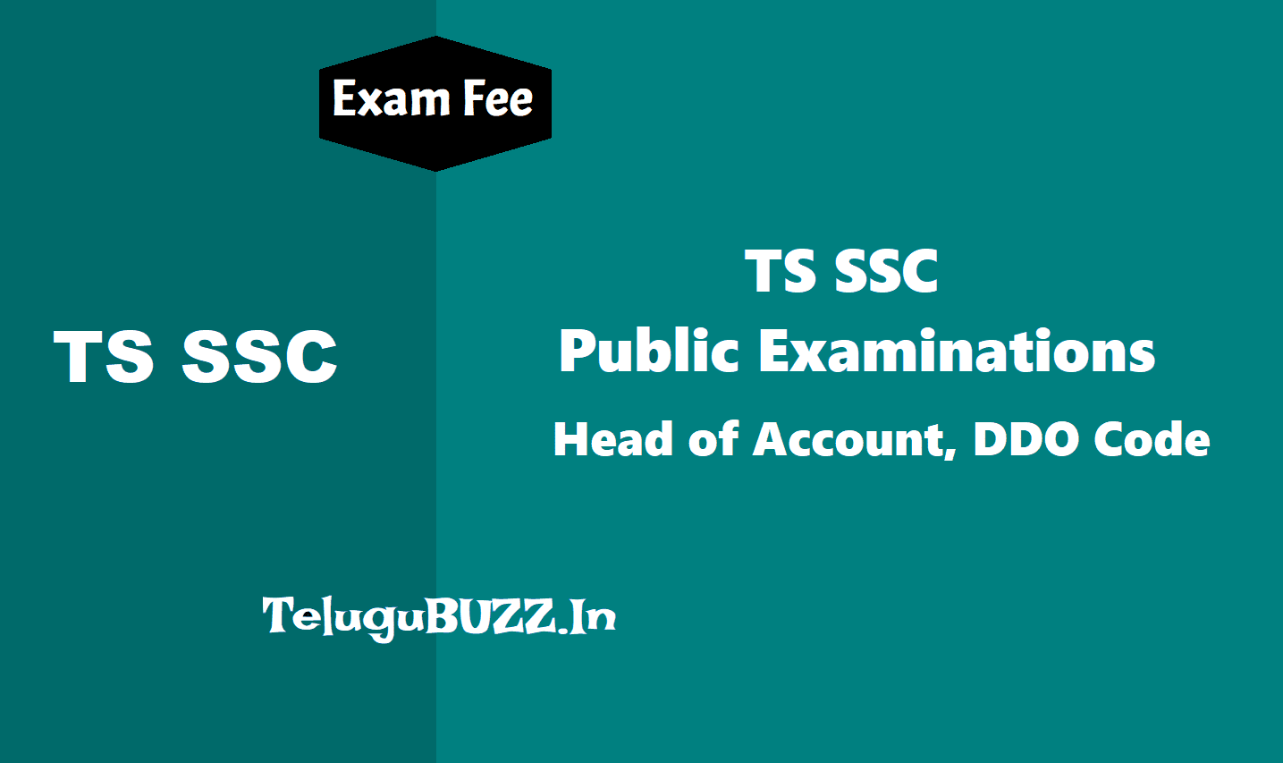 TS SSC 2019 Exams Fee Head of Account, DDO Code