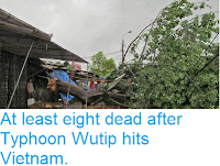 http://sciencythoughts.blogspot.co.uk/2013/10/at-least-eight-dead-after-typhoon-wutip.html