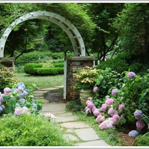 Greenhouse Tales-Hydrangea