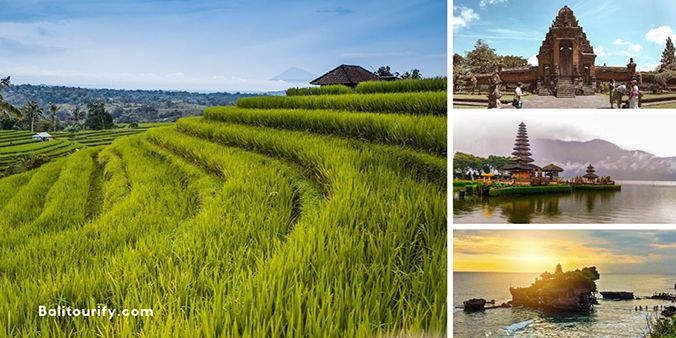 Full Day Jatiluwih Rice Terraces and Tanah Lot Sunset Tour Package, One Day Bali Tours and Activities, Jatiluwih and Tanah Lot Temple Bali Day Trips Itinerary, Private Bali Driver Hire