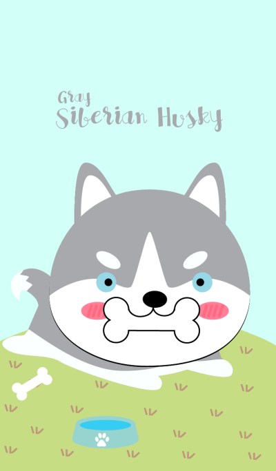 Cute Siberian Husky Dog (Gray)Theme(jp)