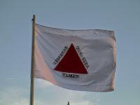 Resultado de imagem para Bandeira da Inconfidência