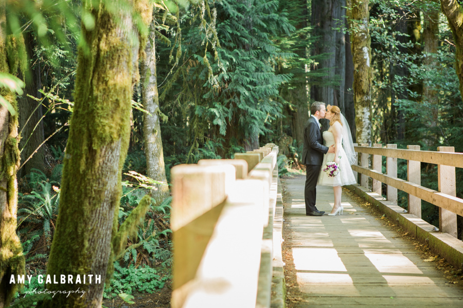 bride and groom kissing on bridge in the woods