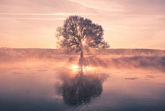Fotógrafo Bielorrusso acorda muito cedo para captar a beleza do inverno