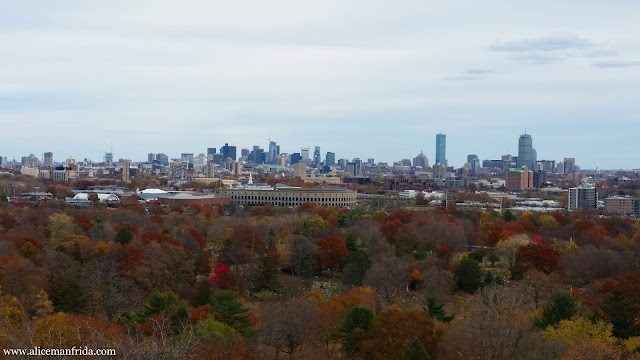 November, skyline, view, Boston, city, travel