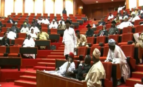 Bill To Lower Age To Contest In Elections Passes First Reading In NASS