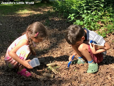 Children looking for bugs in the forest