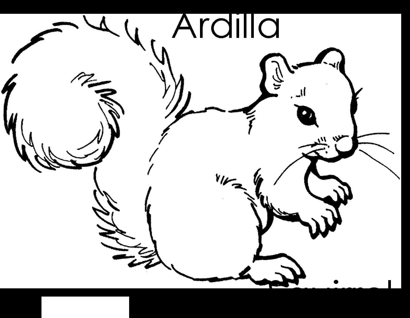 Dibujos De Animales Del Bosque Para Colorear: Imagenes Para Dibujar En Ingles Y Español: Animales Del