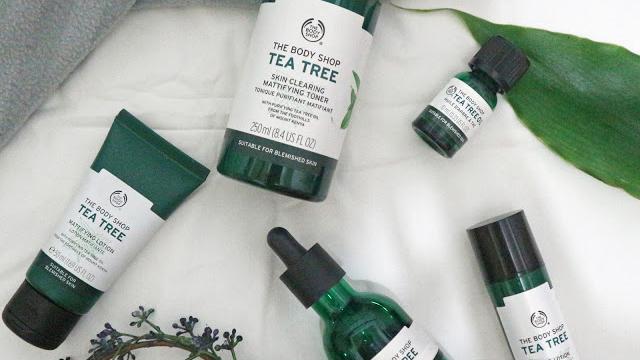 Manfaat Tea Tree Oil Untuk Bekas Jerawat