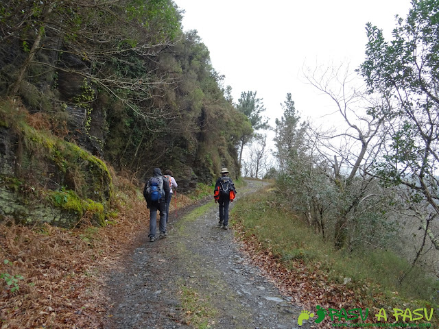 Camino entre el Rebollal y Silvón