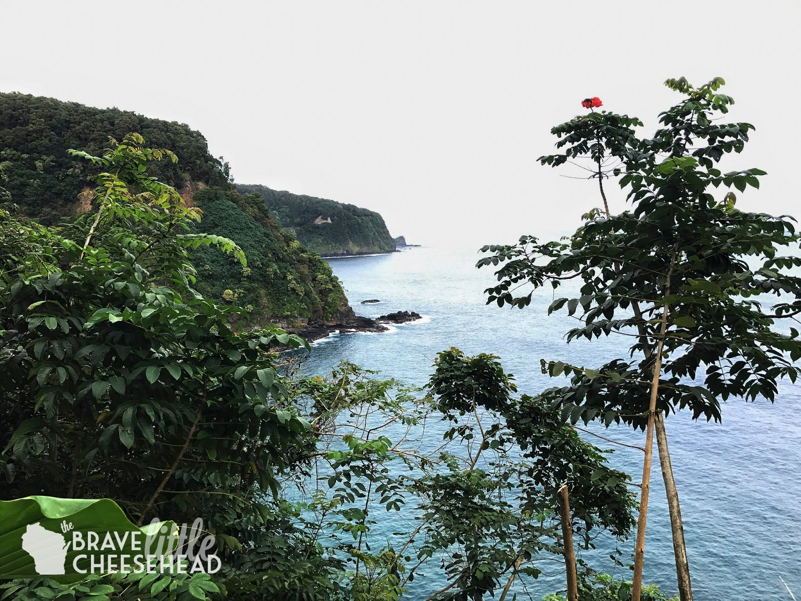 Where to Stop Along Maui's Road to Hana | The Brave Little Cheesehead at bravelittlecheesehead.com