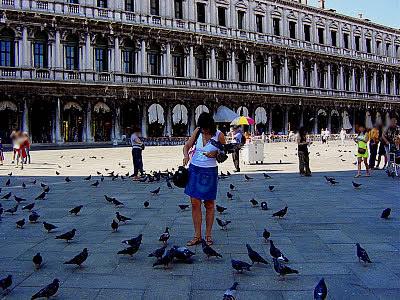 Resultado de imagem para imagem para pombos napracado vaticano