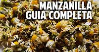 Guia completa para el cultivo de la manzanilla - 1