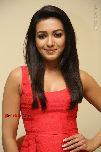 Actress Catherine Tresa Latest Pos in Red Short Dress at Intex Air Conditioners Launch  0003.jpg