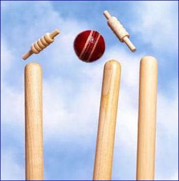 Cricket Puzzle Question