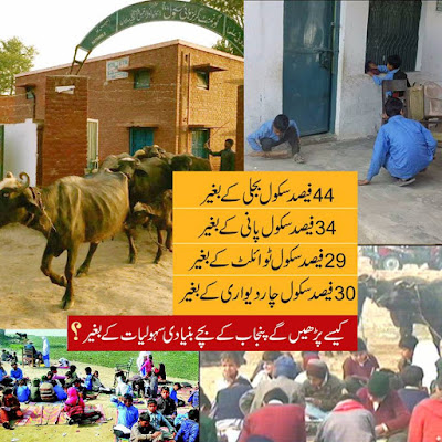 The poor state of Punjab govt Schools.44% without power,34% without water, 29% without toilets,30% without walls. CM Shehbaz without shame