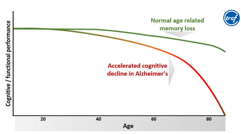 essay on memory loss and aging Memory loss can be stressful and upsetting national institute on aging .