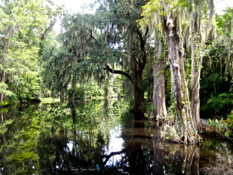 Magnolia Plantation outside of Charleston, South Carolina is a must see! | Ms. Toody Goo Shoes